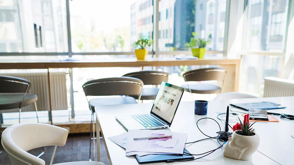 Decoración de oficinas saludables, o cómo tus empleados pueden ser más productivos