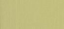 56051 Bright Citreaus